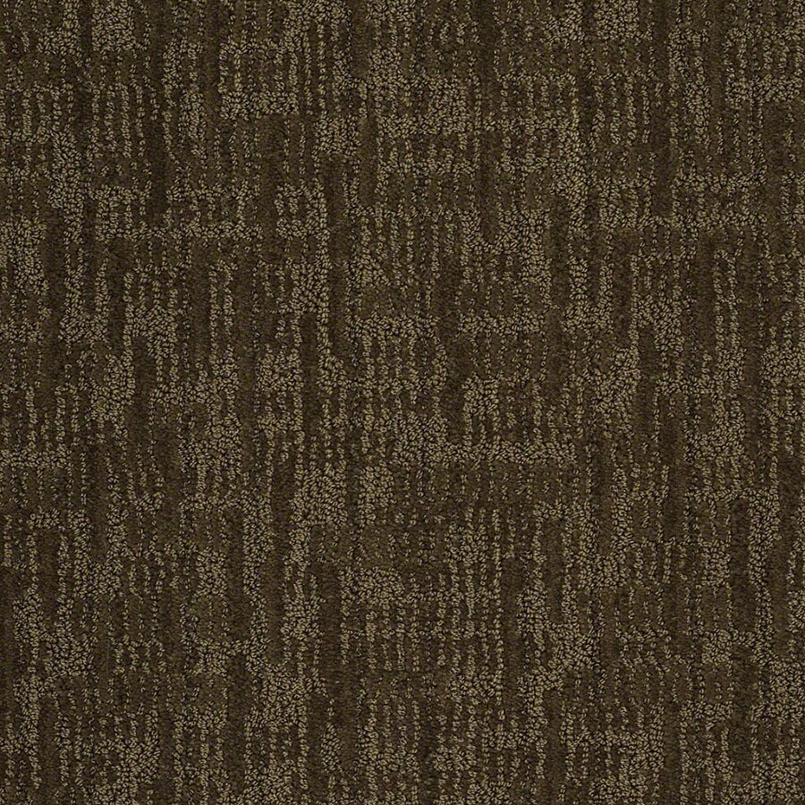 STAINMASTER Unmistakable Active Family Kelp Cut and Loop Carpet Sample
