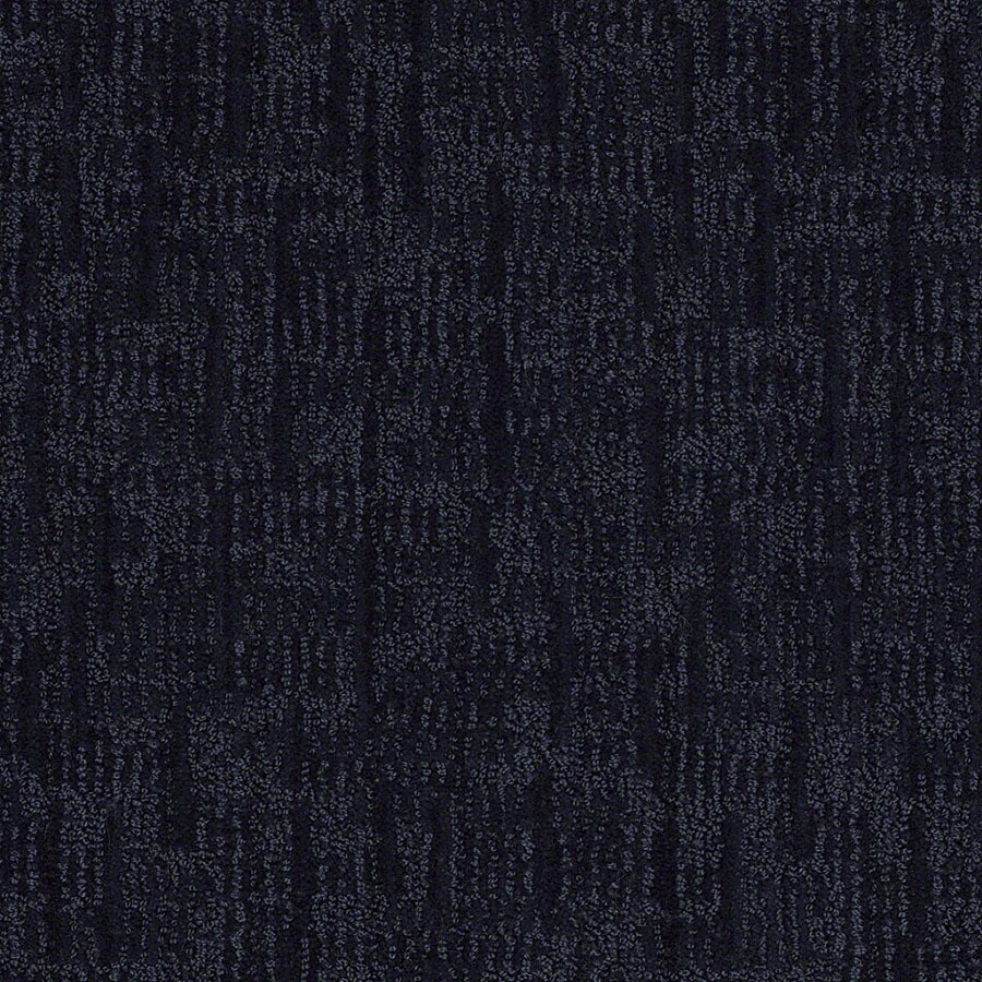 STAINMASTER Active Family Unmistakable Blueberry Muffn Carpet Sample