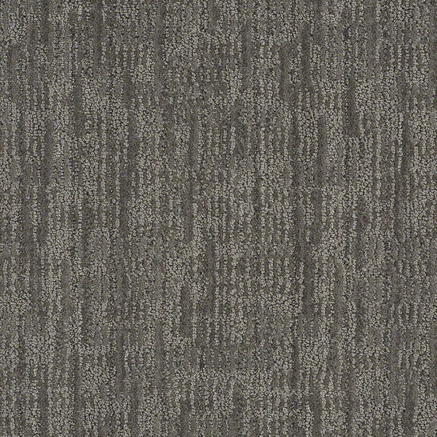 STAINMASTER Unmistakable Active Family Power Gray Cut and Loop Carpet Sample