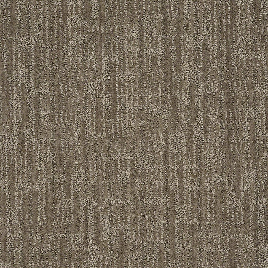 STAINMASTER Active Family Unmistakable Dolphin Berber/Loop Carpet Sample