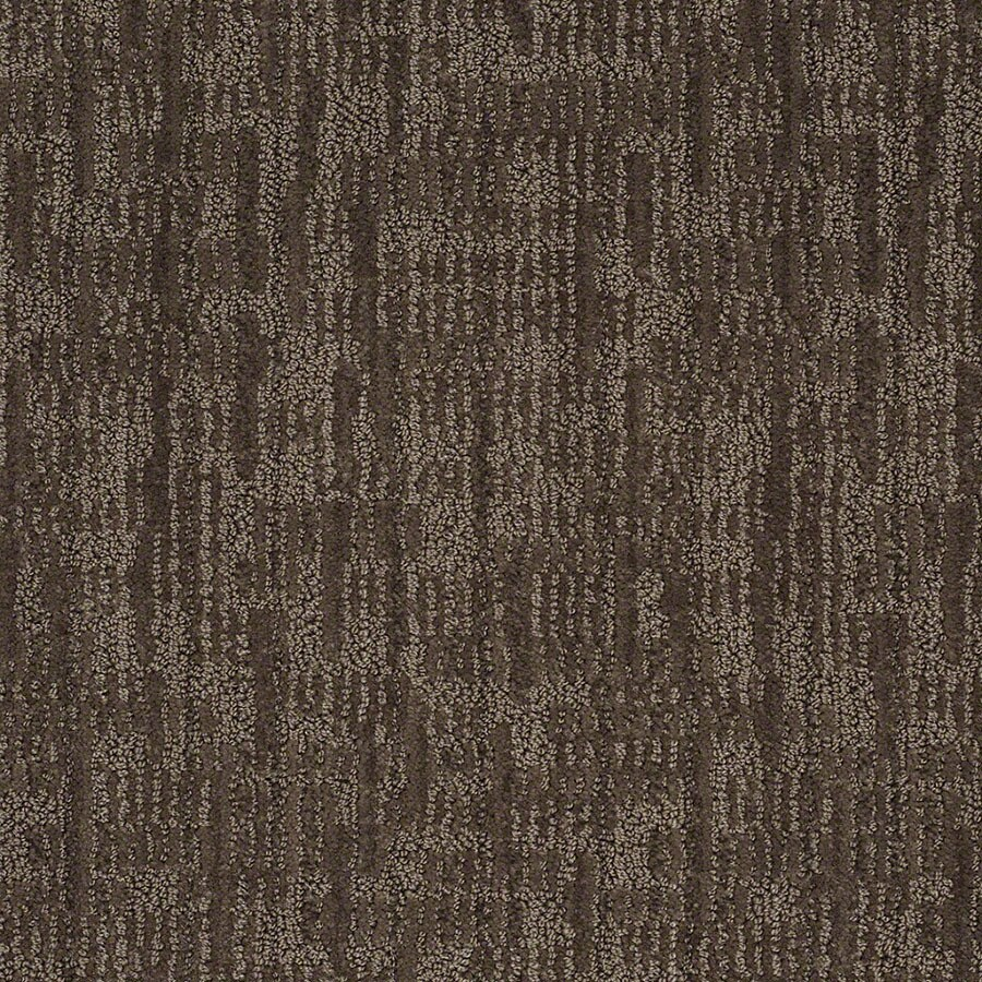 STAINMASTER Active Family Unmistakable Chinchilla Berber/Loop Carpet Sample