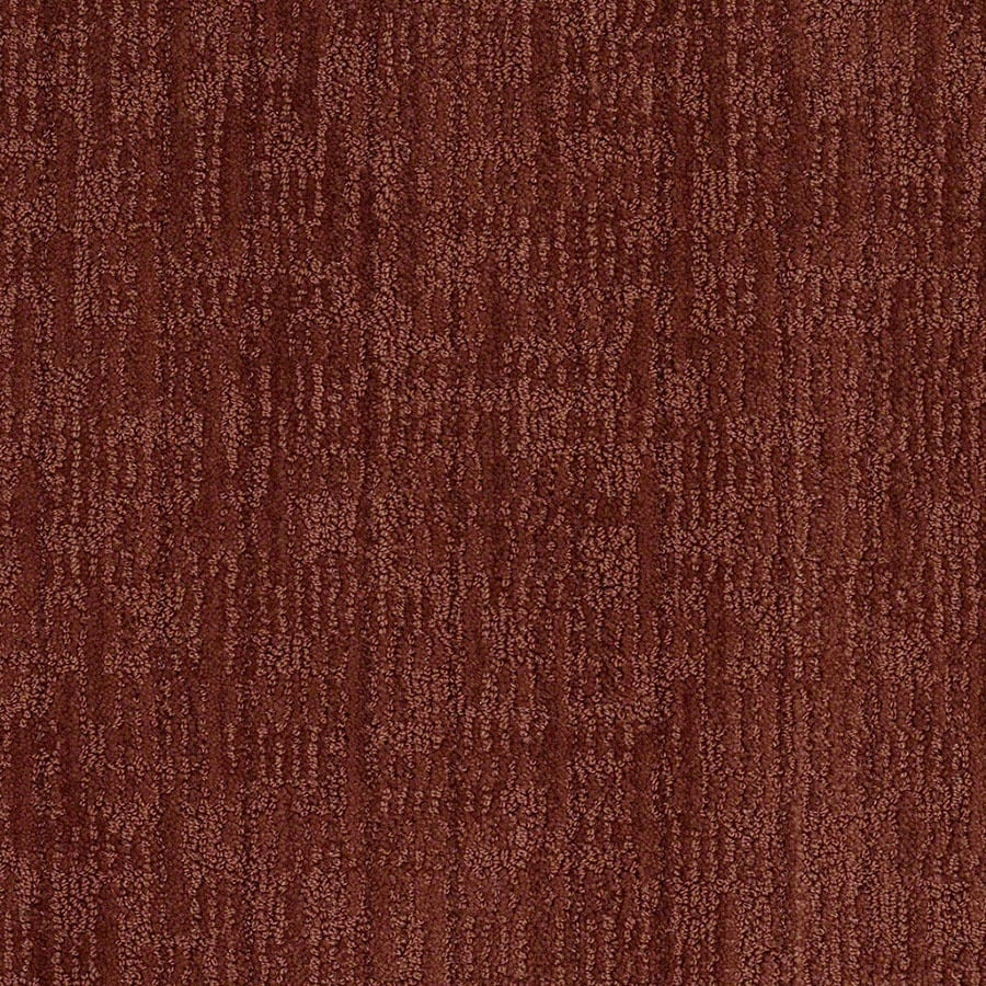 STAINMASTER Active Family Unmistakable Cinnamon Stick Carpet Sample