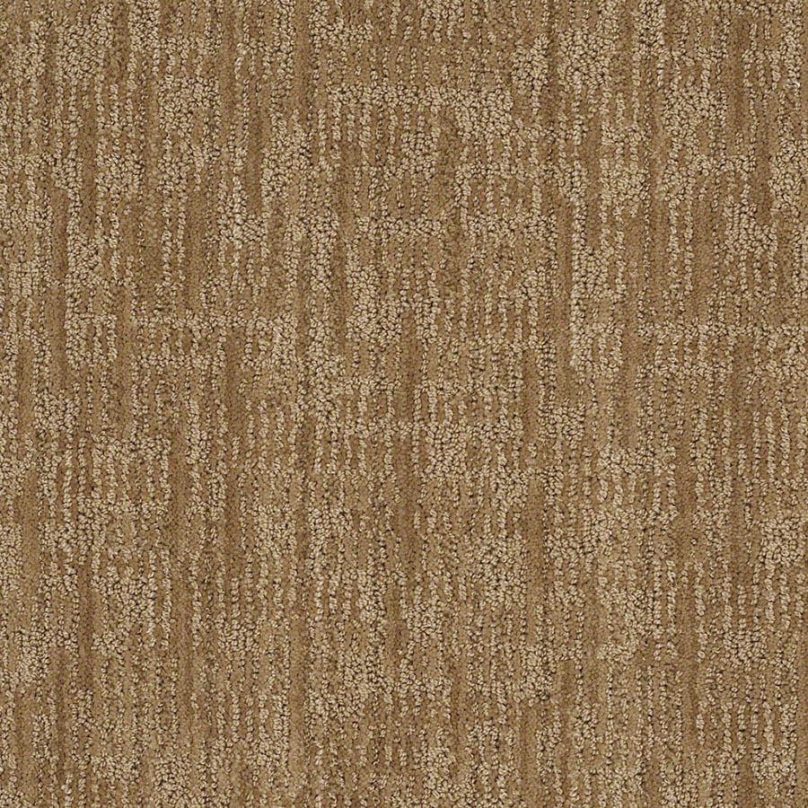 STAINMASTER Active Family Unmistakable Curry Carpet Sample