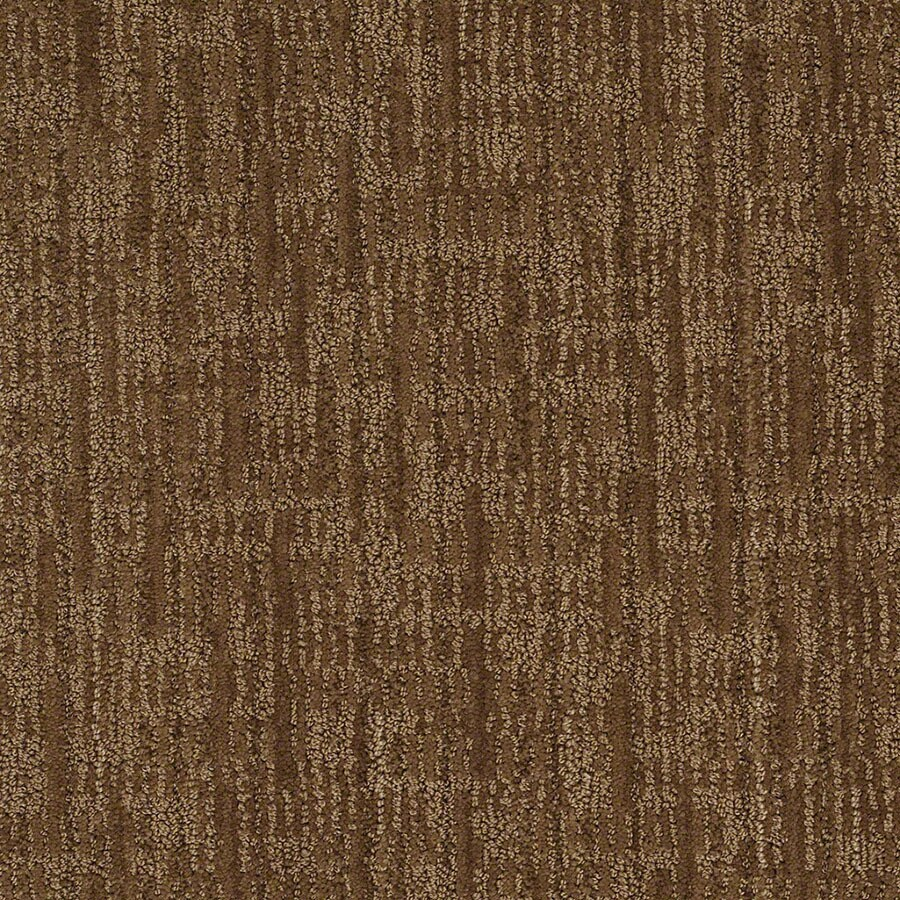 STAINMASTER Active Family Unmistakable Almond Crunch Carpet Sample