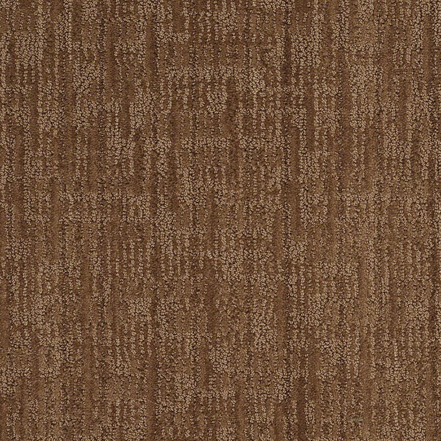 STAINMASTER Unmistakable Active Family Autumn Bark Cut and Loop Carpet Sample
