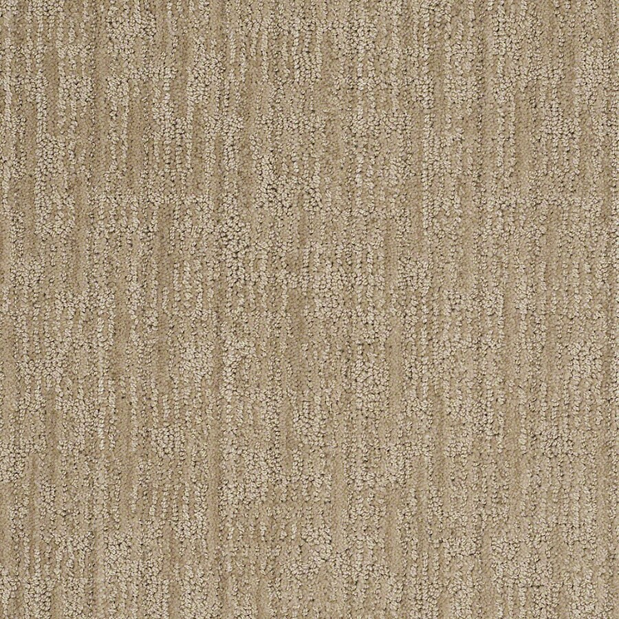STAINMASTER Unmistakable Active Family Verona Beach Cut and Loop Carpet Sample