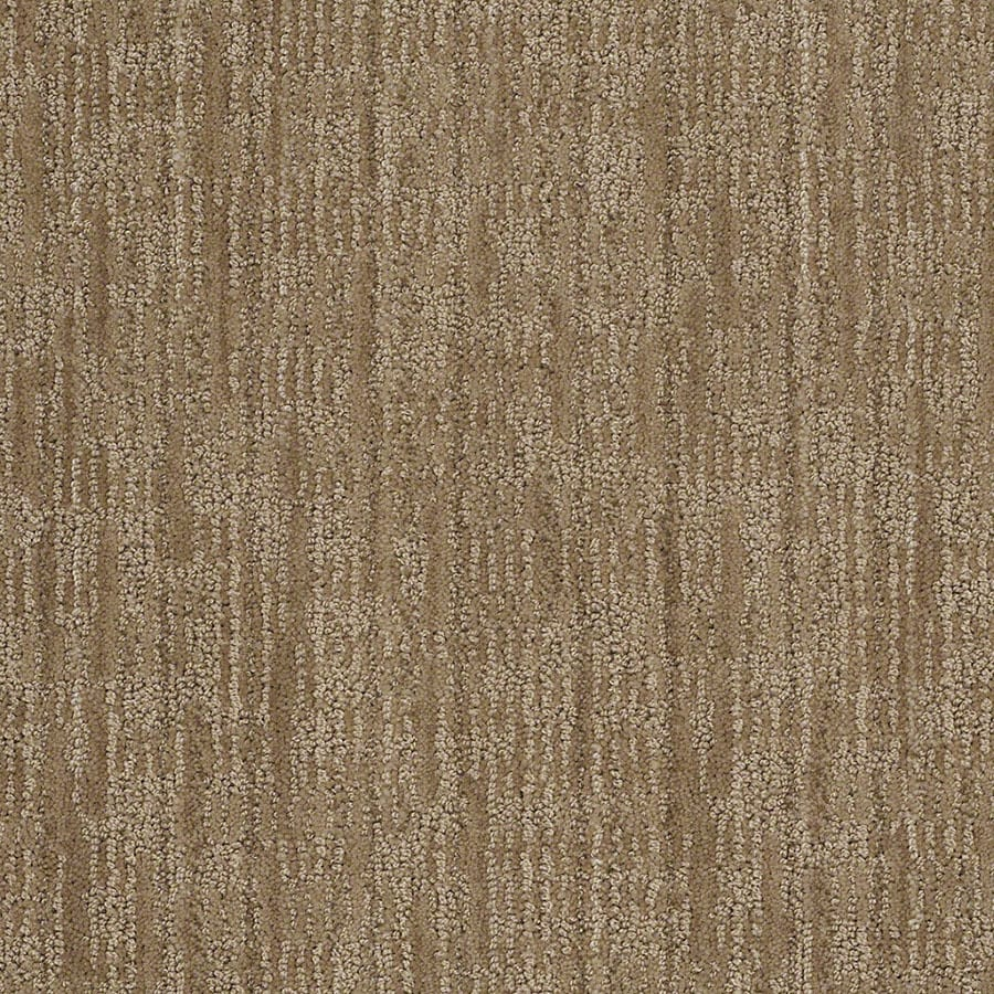 STAINMASTER Unmistakable Active Family Urban Putty Cut and Loop Carpet Sample