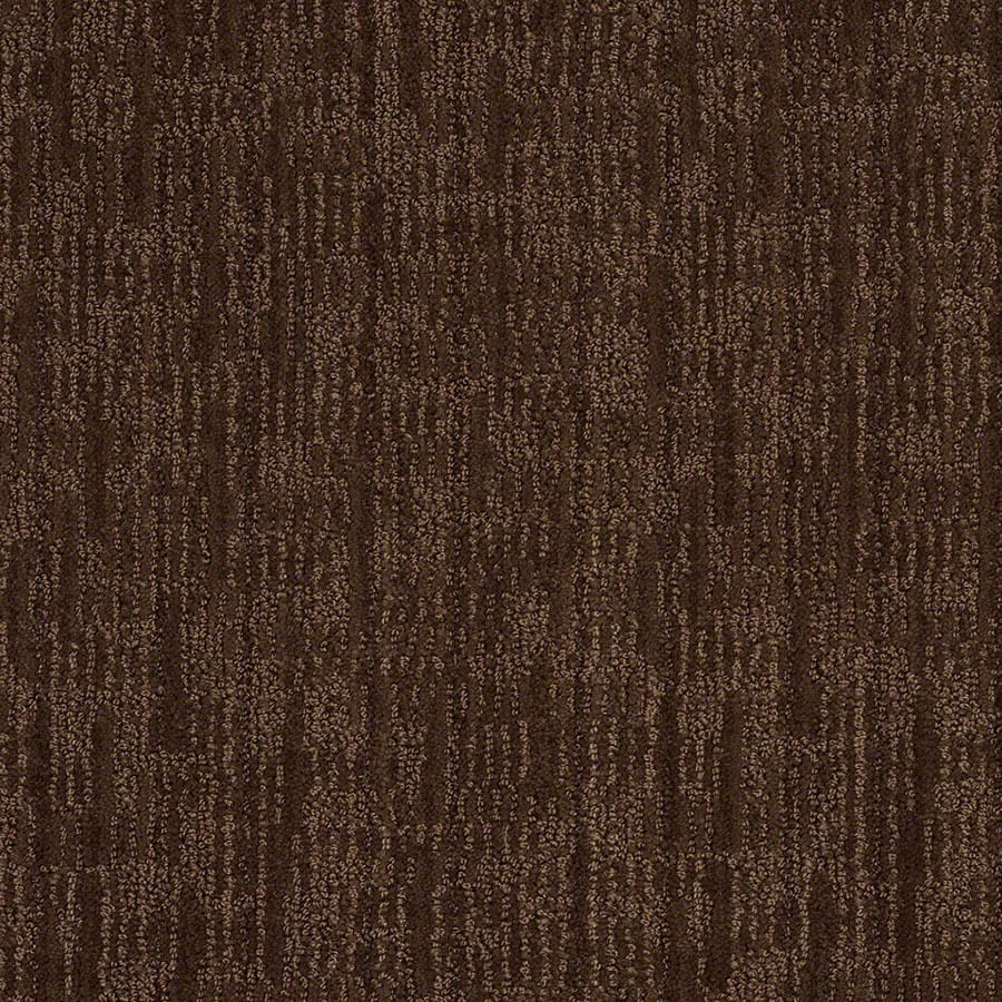 STAINMASTER Active Family Unmistakable Coffee Bean Carpet Sample