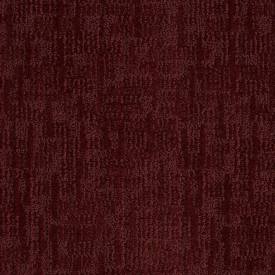 STAINMASTER Active Family Unmistakable Spiced Berry Carpet Sample