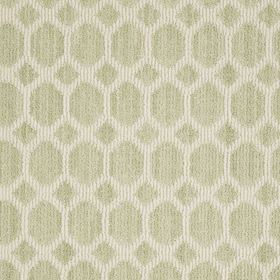 STAINMASTER Active Family All the Rage Glen Green Carpet Sample