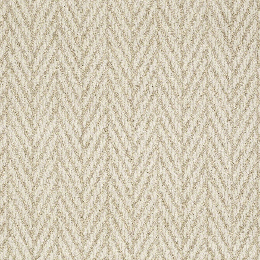 STAINMASTER Apparent Beauty Active Family Whisper Berber Carpet Sample