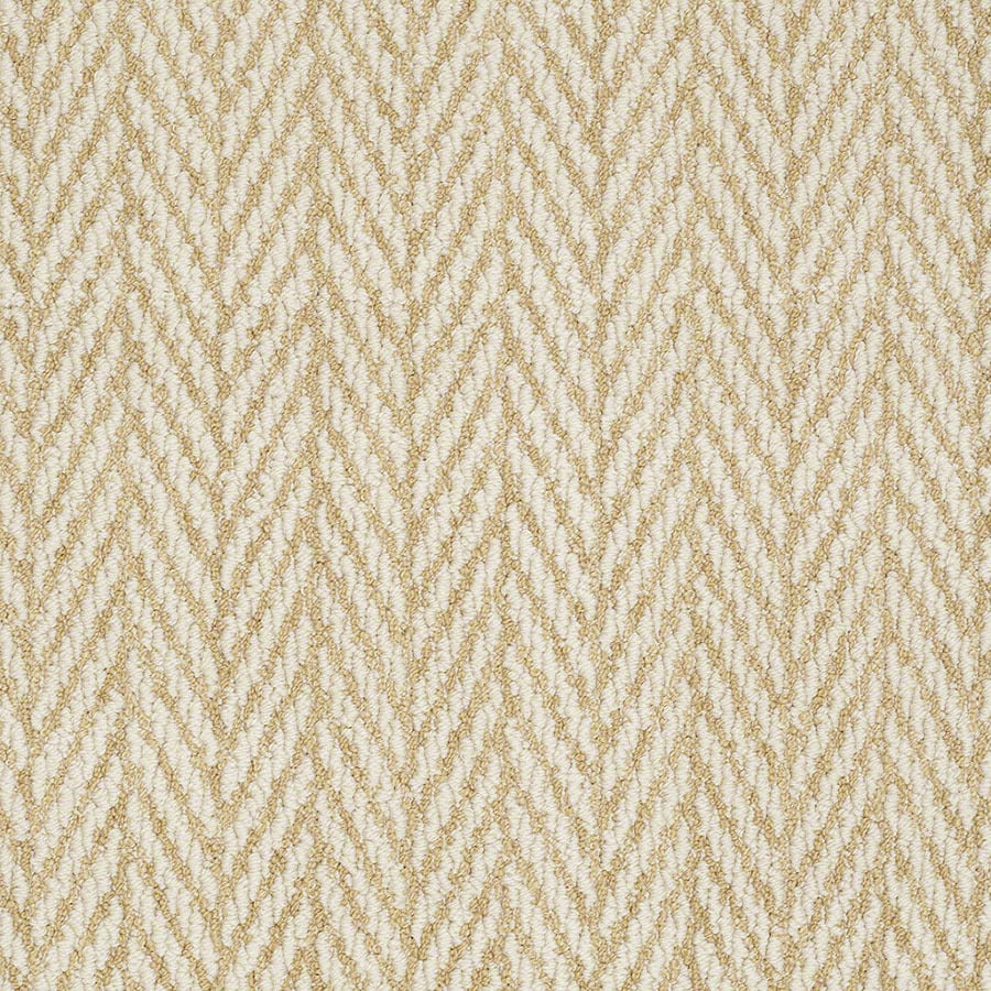 STAINMASTER Active Family Apparent Beauty Fresh Citrus Berber/Loop Carpet Sample