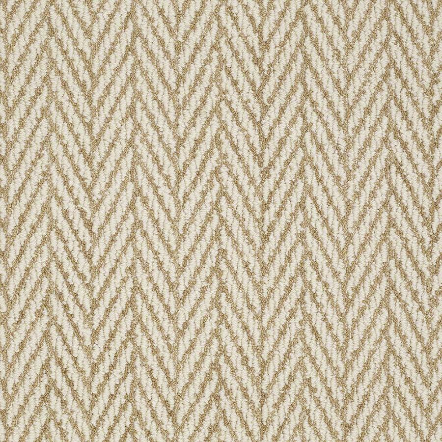 STAINMASTER Active Family Apparent Beauty Desert Tan Carpet Sample
