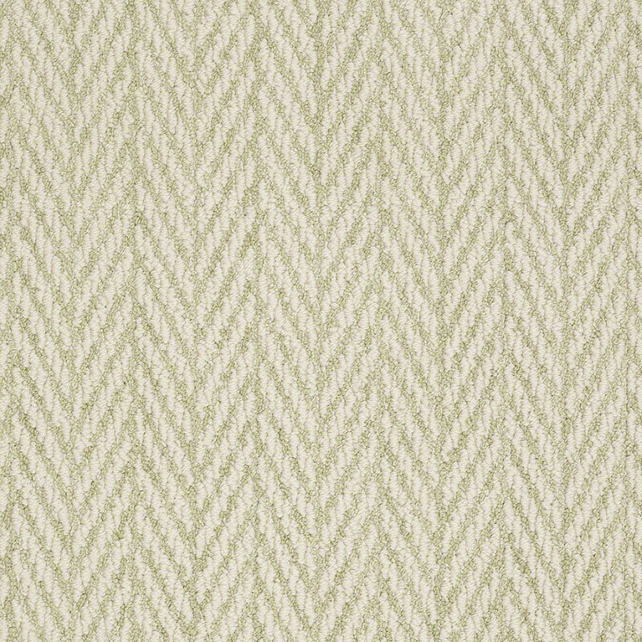 STAINMASTER Active Family Apparent Beauty Glen Green Berber/Loop Carpet Sample