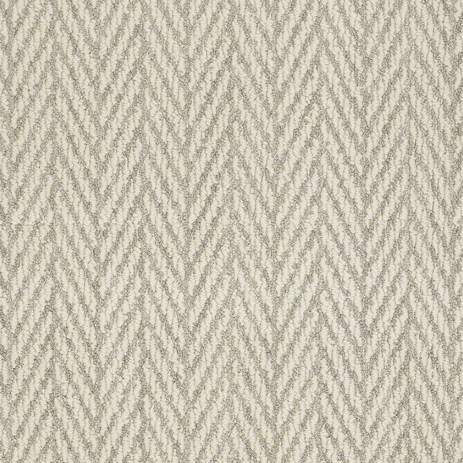 STAINMASTER Apparent Beauty Active Family Misty Dawn Berber Carpet Sample