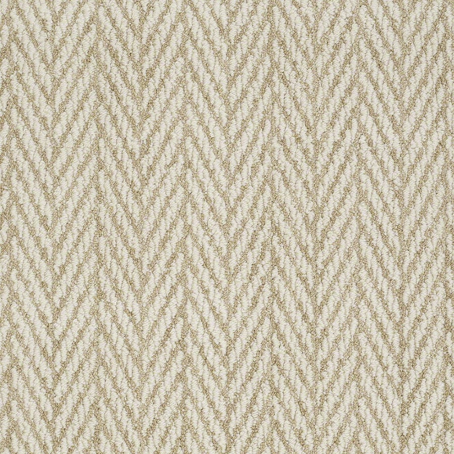 STAINMASTER Apparent Beauty Active Family Fine Grain Berber Carpet Sample