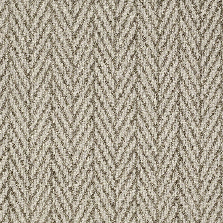 STAINMASTER Apparent Beauty Active Family Cliff Edge Berber Carpet Sample