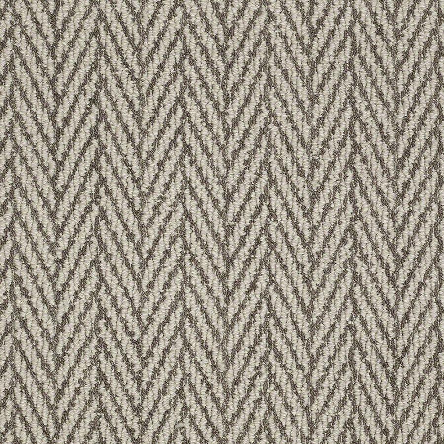 STAINMASTER Apparent Beauty Active Family Windsor Gray Berber Carpet Sample