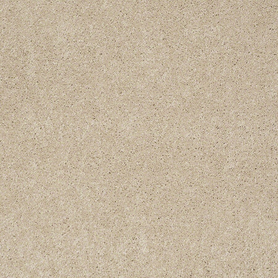 STAINMASTER Supreme Delight 2 Active Family Pacific Pearl Plush Carpet Sample