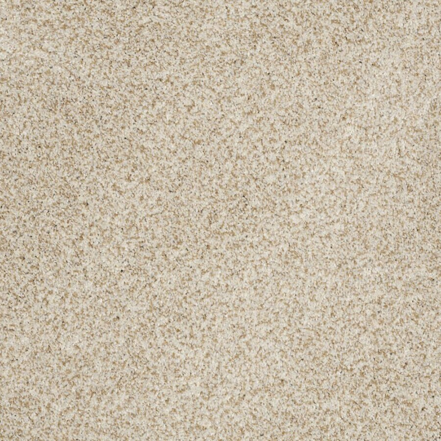 STAINMASTER TruSoft Private Oasis II Tranquility Carpet Sample
