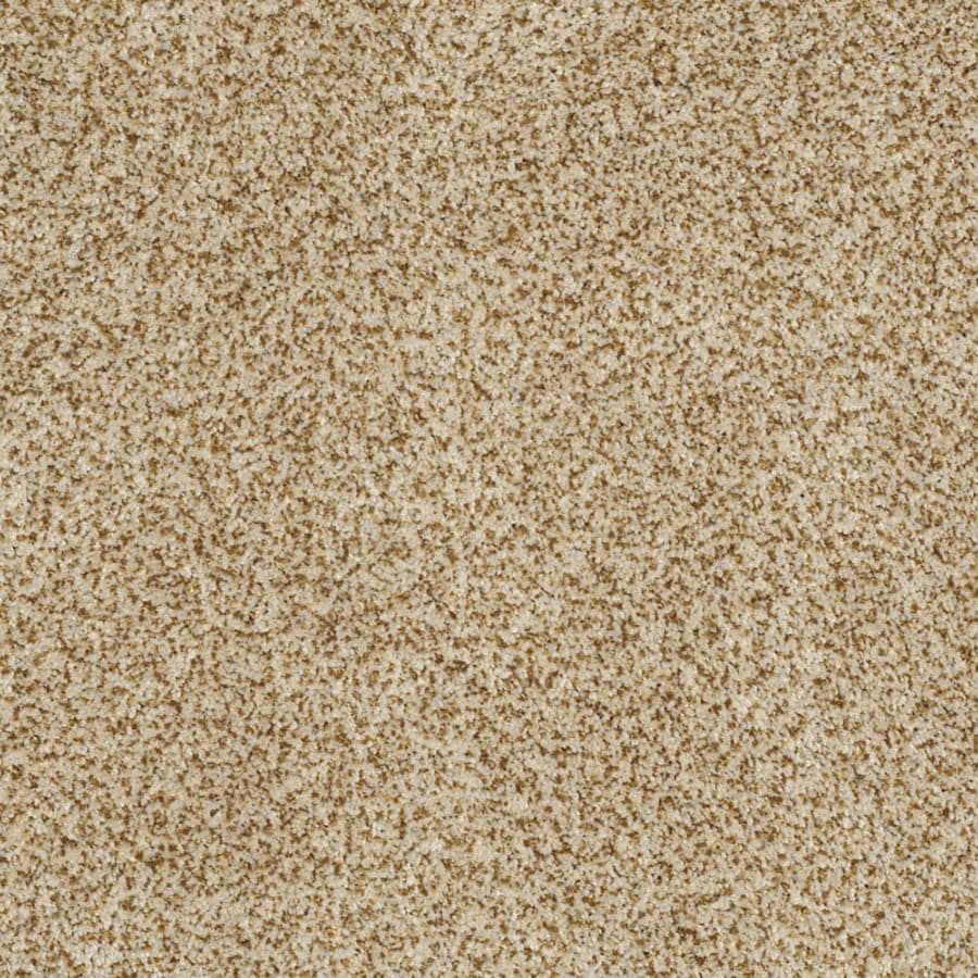 STAINMASTER TruSoft Private Oasis II Apollo Carpet Sample