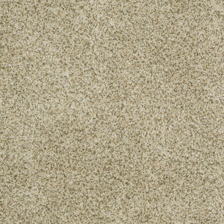 STAINMASTER TruSoft Private Oasis II Sea Foam Carpet Sample