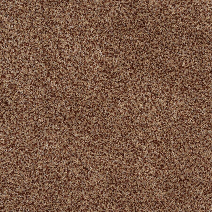 STAINMASTER TruSoft Private Oasis II Montana Plush Carpet Sample
