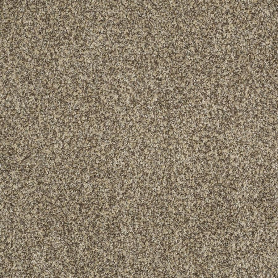 STAINMASTER TruSoft Private Oasis II Taupe Carpet Sample