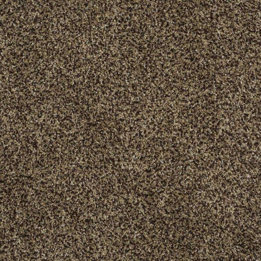 STAINMASTER TruSoft Private Oasis II Appia Plush Carpet Sample