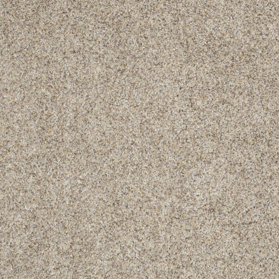 STAINMASTER TruSoft Private Oasis II Antico Carpet Sample