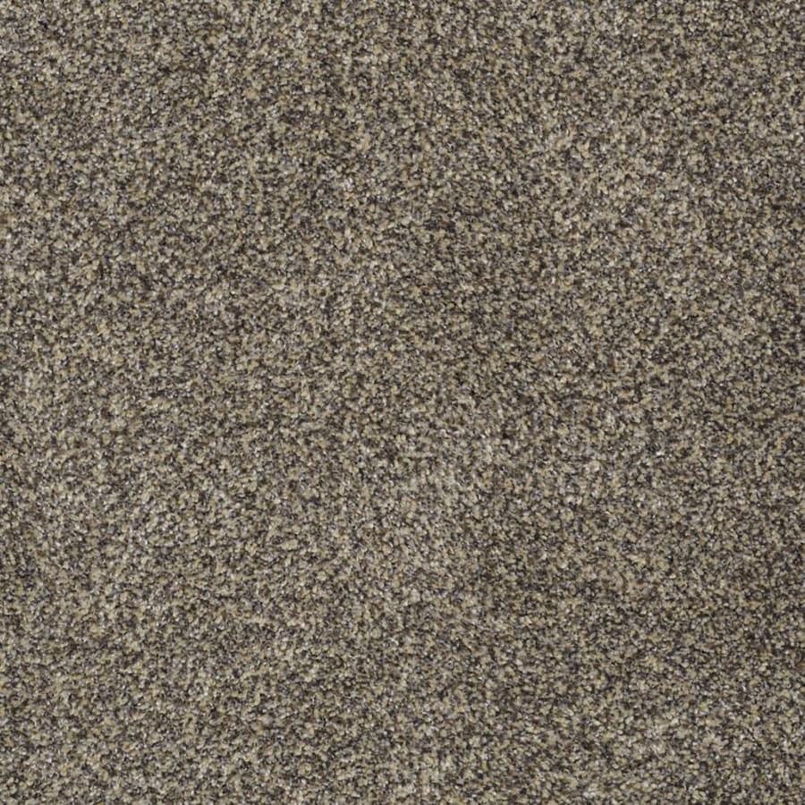 STAINMASTER Private Oasis II TruSoft Dakota Plush Carpet Sample