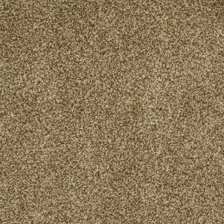 STAINMASTER Private Oasis III TruSoft Tigereye Plush Carpet Sample