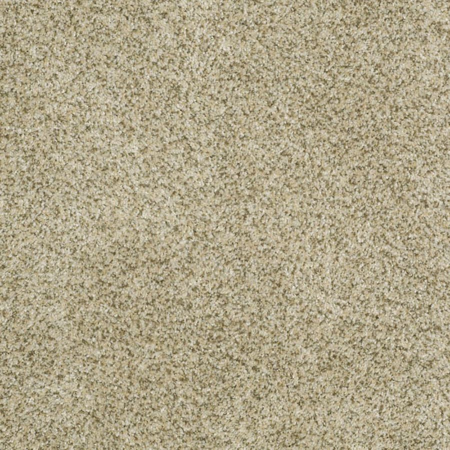 STAINMASTER Private Oasis III Trusoft Sea Foam Plus Carpet Sample