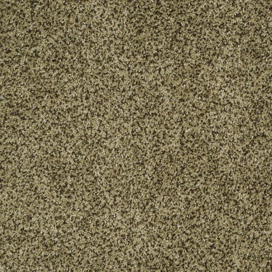STAINMASTER TruSoft Private Oasis III Verde Carpet Sample