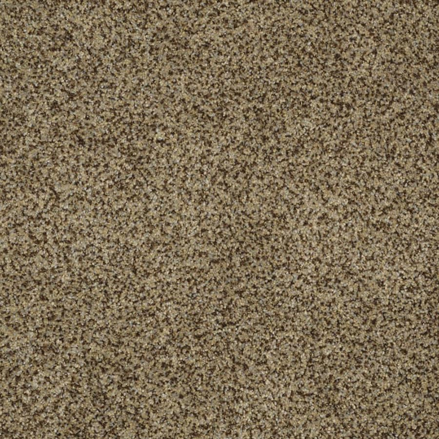 STAINMASTER TruSoft Private Oasis III Bahia Plush Carpet Sample