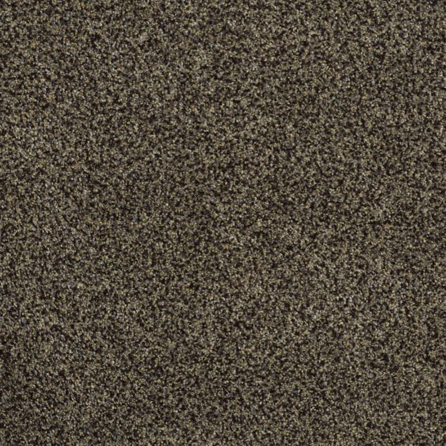 STAINMASTER TruSoft Private Oasis III Star Beach Carpet Sample