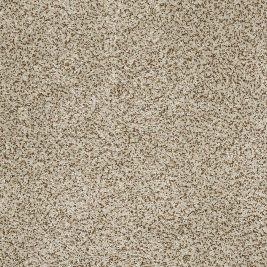 STAINMASTER TruSoft Private Oasis III Solarius Carpet Sample