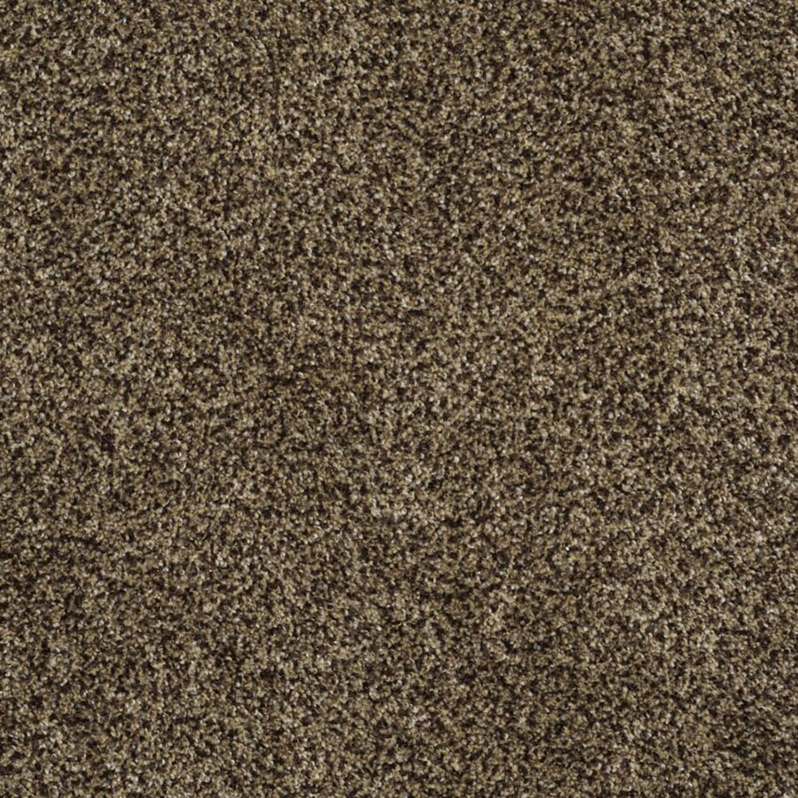STAINMASTER TruSoft Private Oasis III Appia Carpet Sample