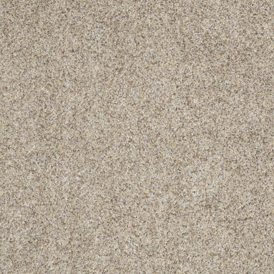 STAINMASTER Private Oasis III Trusoft Antico Plus Carpet Sample