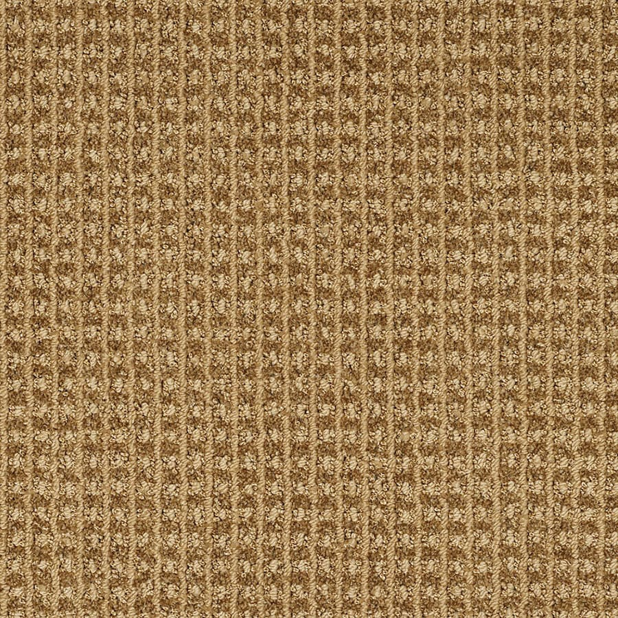 STAINMASTER Rising Star TruSoft Gold Rush Cut and Loop Carpet Sample