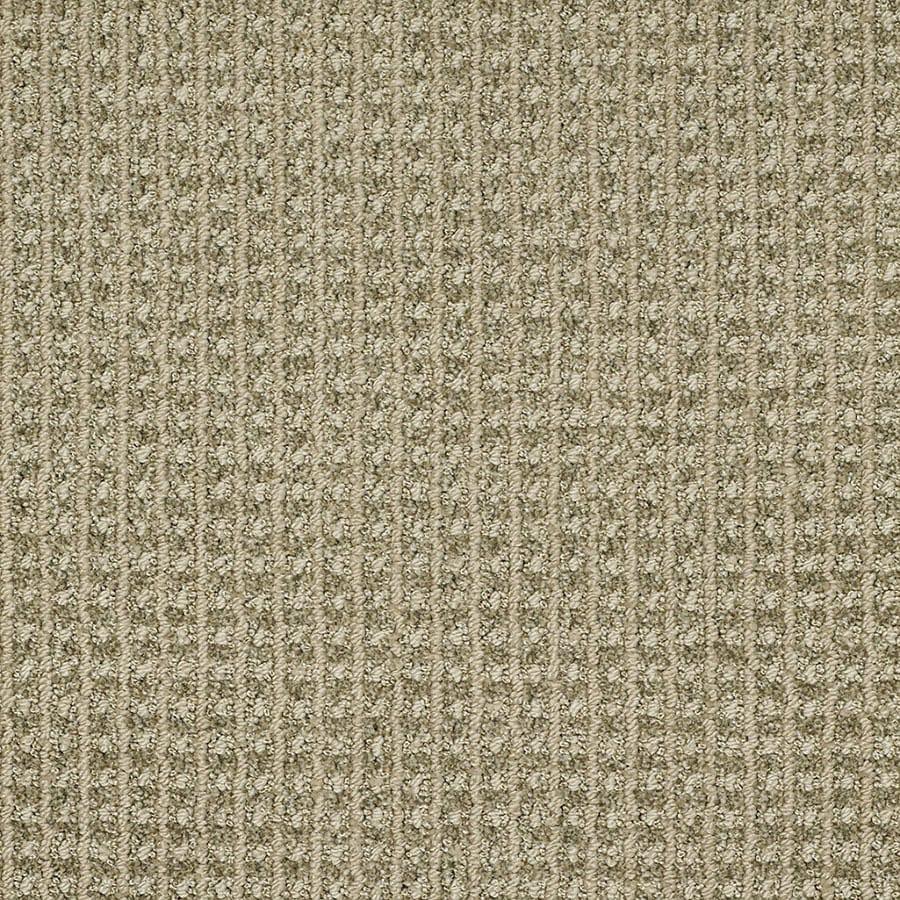 STAINMASTER TruSoft Rising Star Spring Grass Carpet Sample