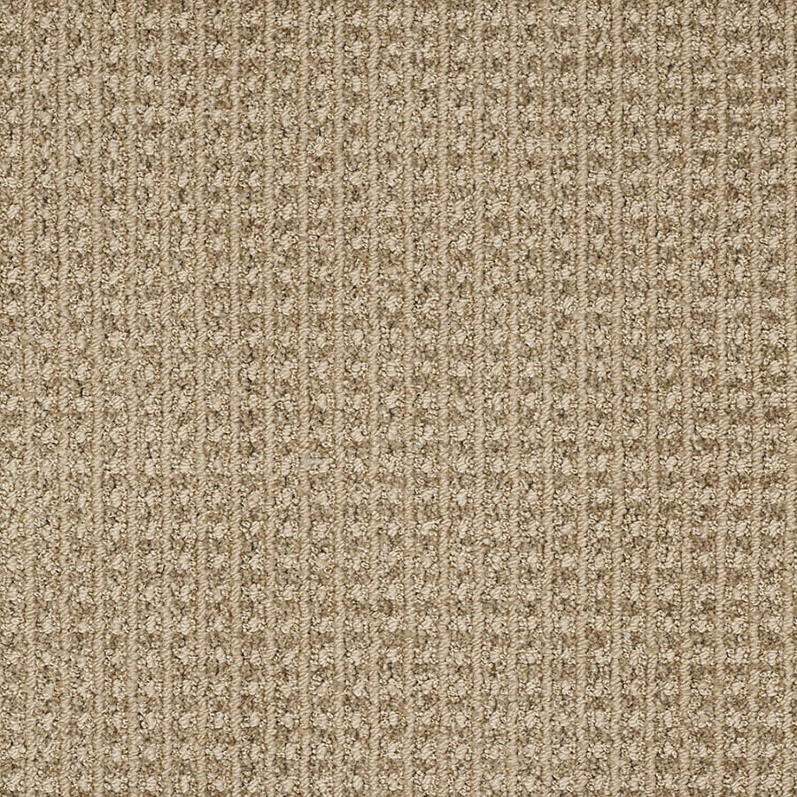 STAINMASTER TruSoft Rising Star Light Mocha Carpet Sample