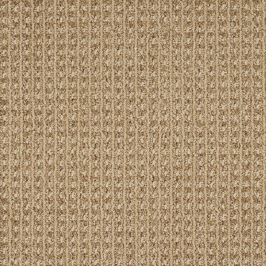 STAINMASTER Rising Star Trusoft Great Plains Cut and Loop Carpet Sample