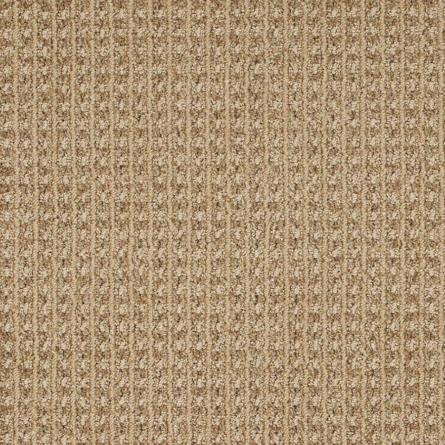 STAINMASTER TruSoft Rising Star Great Plains Carpet Sample
