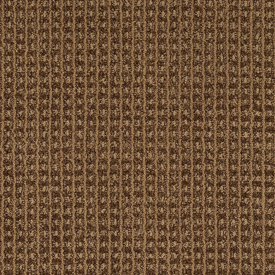 STAINMASTER Rising Star Trusoft Cocoa Pecan Cut and Loop Carpet Sample