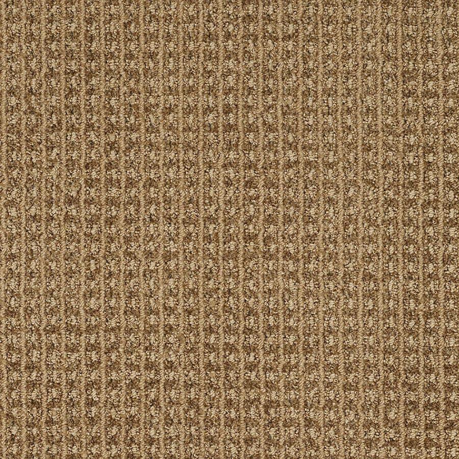 STAINMASTER TruSoft Rising Star Frontier Berber/Loop Carpet Sample