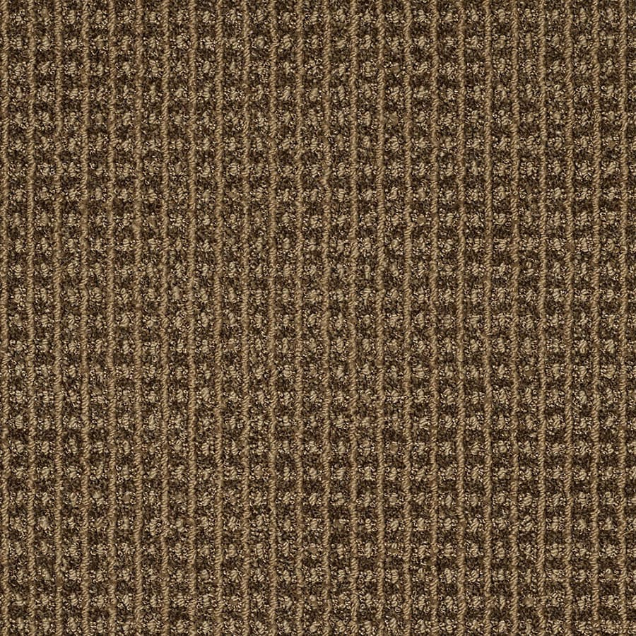 STAINMASTER TruSoft Rising Star Seacliff Berber/Loop Carpet Sample