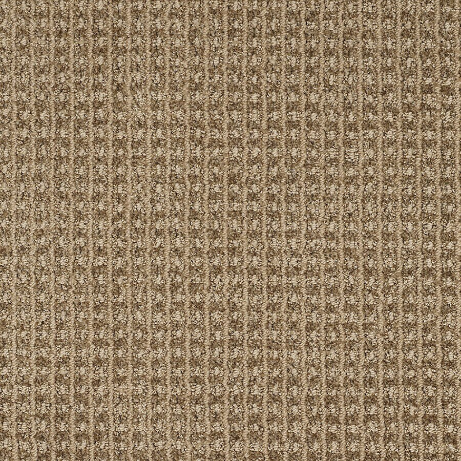 STAINMASTER Rising Star TruSoft Taupe Charm Cut and Loop Carpet Sample