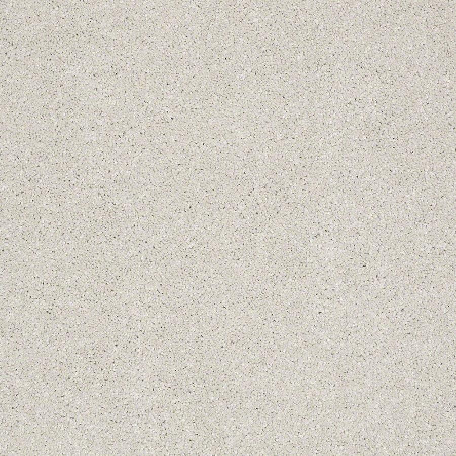 STAINMASTER Luscious IV (S) TruSoft Mist Plus Carpet Sample
