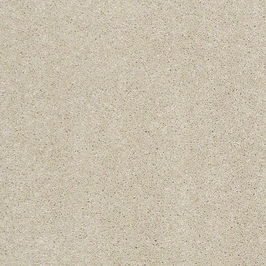 STAINMASTER Luscious IV (S) TruSoft Modern Studio Plus Carpet Sample